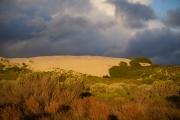 Deborah Silvis Dune Glow, DeHoop Reserve, S. Africa Digital C-Print 2014 $350