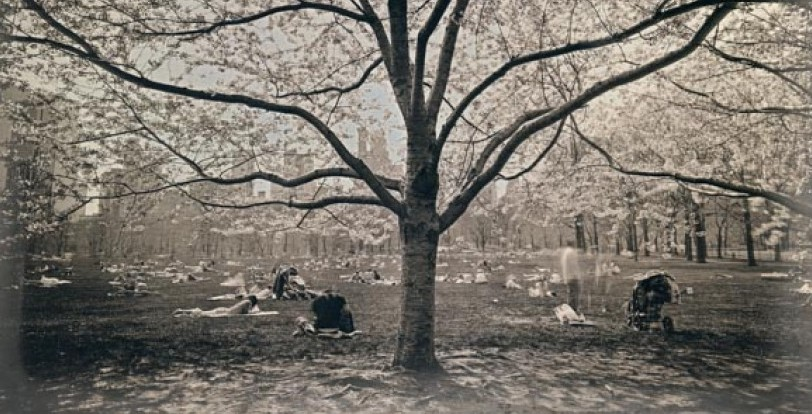 Daguerreotype Slider