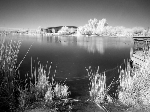 Infrared IR 33-Richard Fee