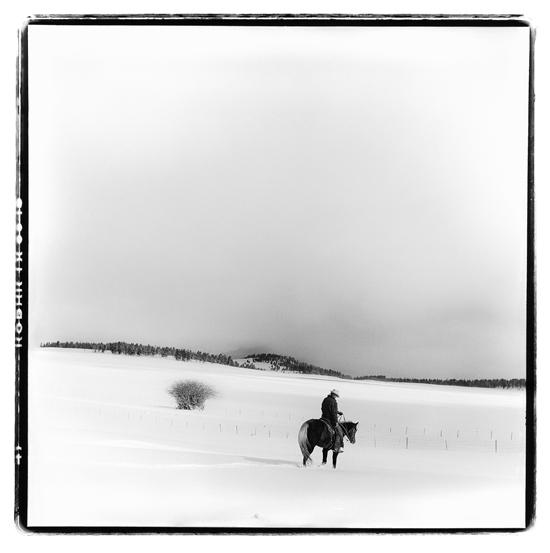 First Snow.16x16.pigmentarchivalprint