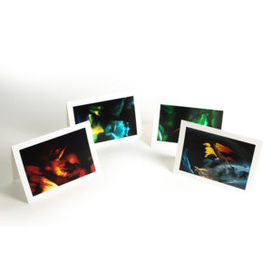 Wynn Bullock Color Light Abstraction Notecards